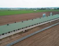 Свинарник - термоізоляция Thermano Agro